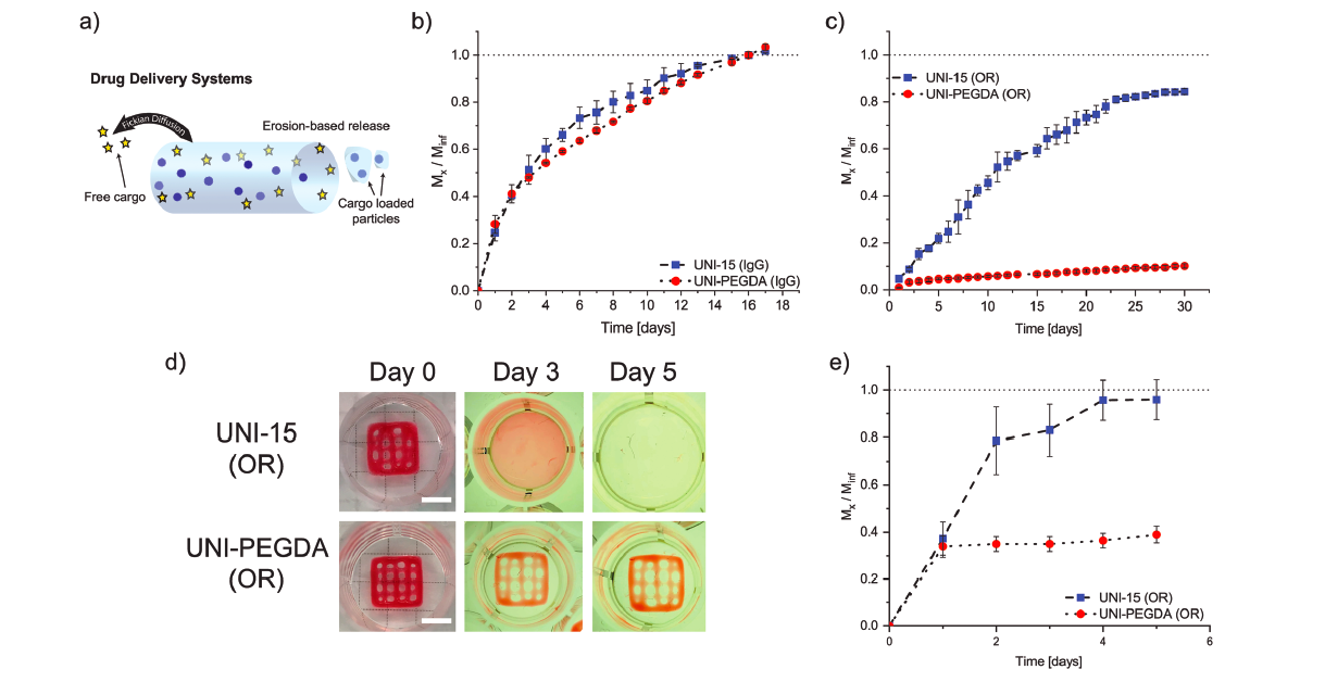 Zurich researchers create common service bioink for 3D printing 1