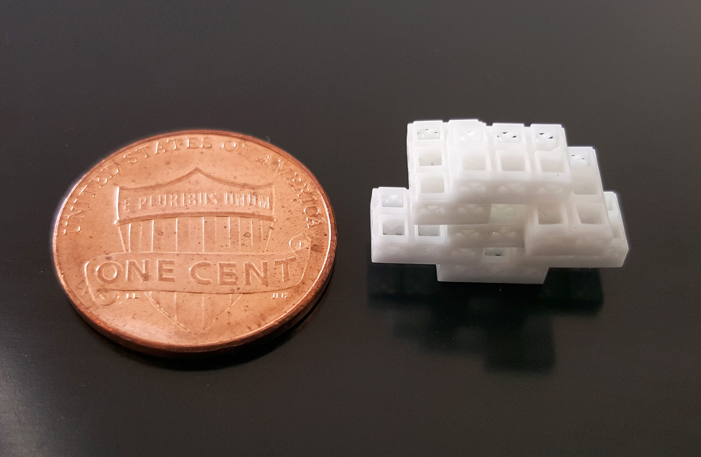 Each brick (pictured) was 1.5 millimeters cubed in size, or around the area of a small flea. Photo via OHSU.