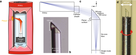 The researchers' microscopic 3D printed device (pictured) has a diameter of just 0.48mm. Image via the Light, Sciences and Applications journal.
