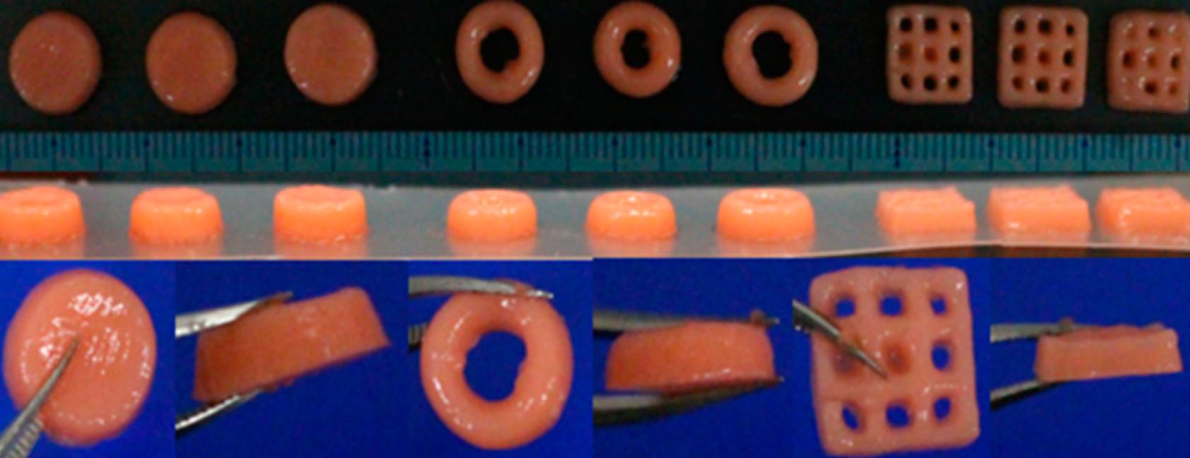 Nagoya researchers 3D bioprint fish gelatin-based anticancer patches 1