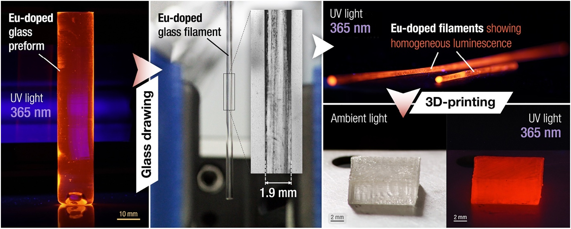 The filament and printed parts displayed homogenous light distribution throughout. Image via University of Bordeaux.