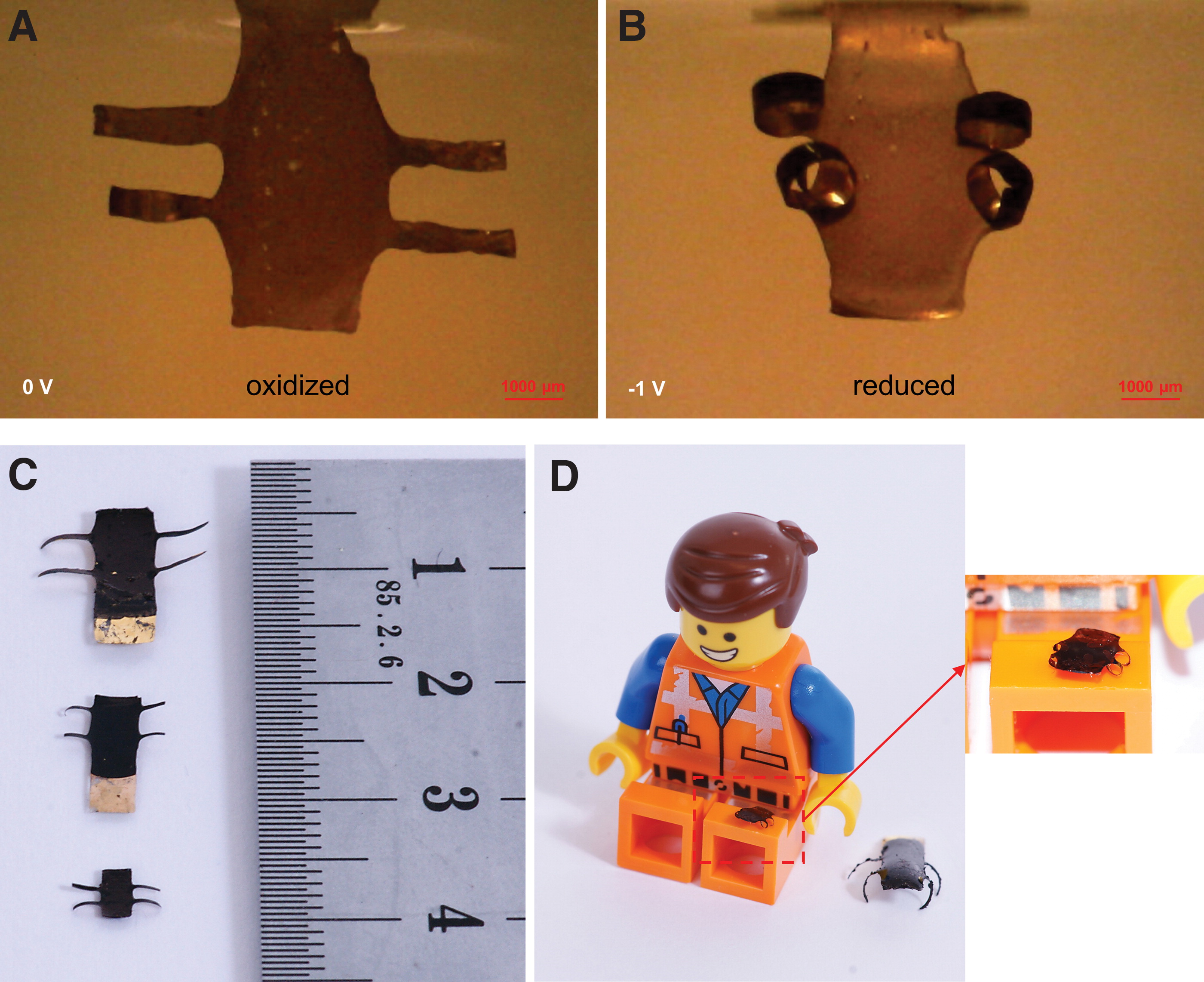 The smallest 4D printed micro-robots. Photos via Linköping University.