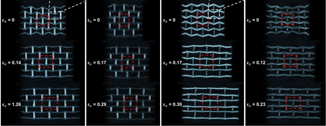 An active lattice structure composed of functionally graded LCE. Image via UC San Diego.