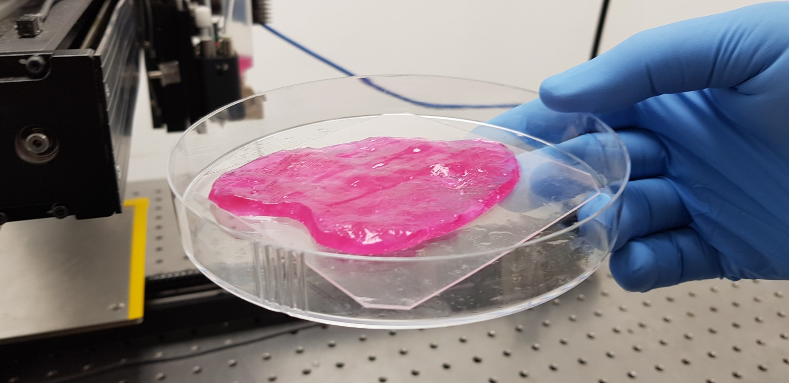The 3D printed meat culture structures are grown in incubators before being frozen and packaged for shipping. Image via Meat-Tech 3D.