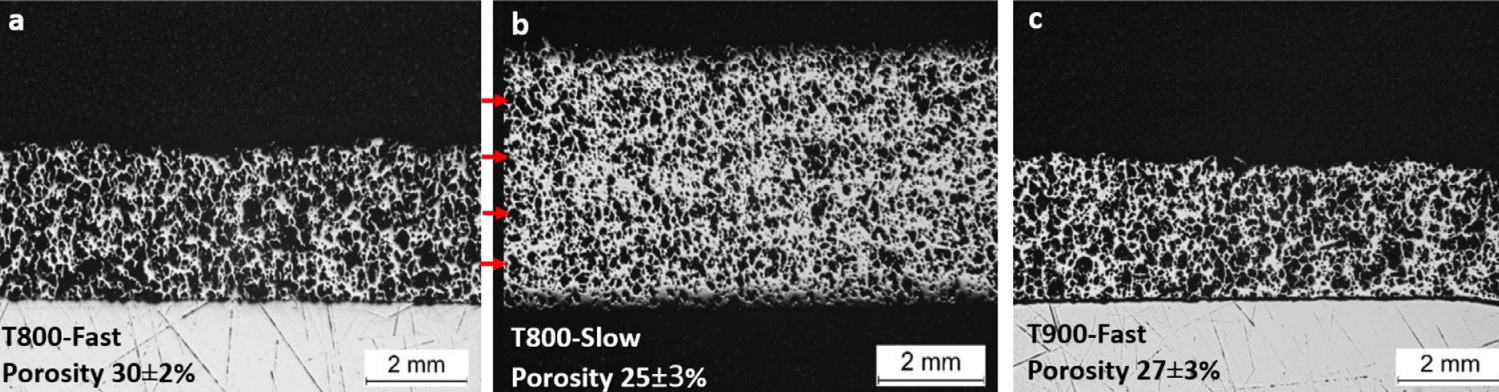 Optical micrographs of samples printed at 800 and 900 with slow and fast deposition. Image via MIT.