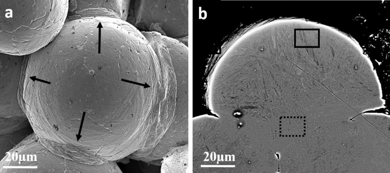 SEM imaging of individual Ti64 particles. Image via MIT.