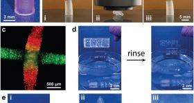 3D printing and testing of the DNGHs. Image via Advanced Functional Materials.