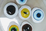 Chungbuk scientists 3D print cheap customizable eye implants for 'man's best friend'