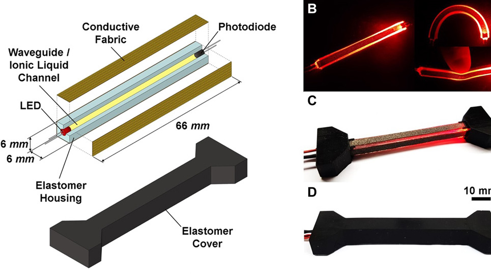 The researchers were able to integrate their 3D printed sensor (pictured) into various soft robotics devices. Image via the Science Robotics journal.