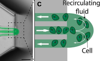 The Biopixlar's microfluidic nozzle (pictured) allowed the team to recirculate cells, which enabled them to achieve a high level of accuracy during testing. Image via the Scientific Reports journal.