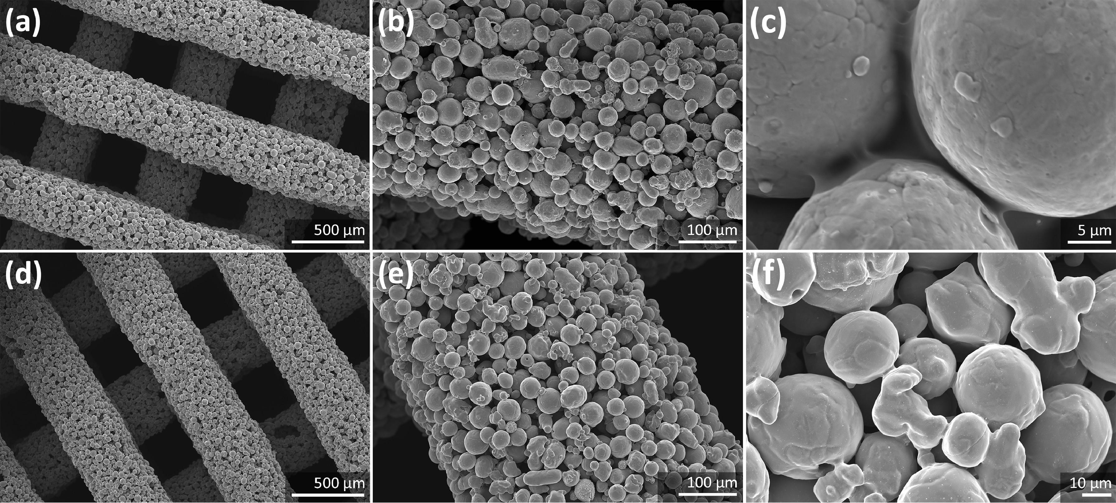 SEM imaging of the porous iron scaffolds. Image via TU Delft.