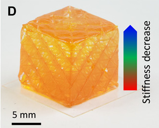 Isotropic picture of a 3D printed composite cube with gradient stiffness.