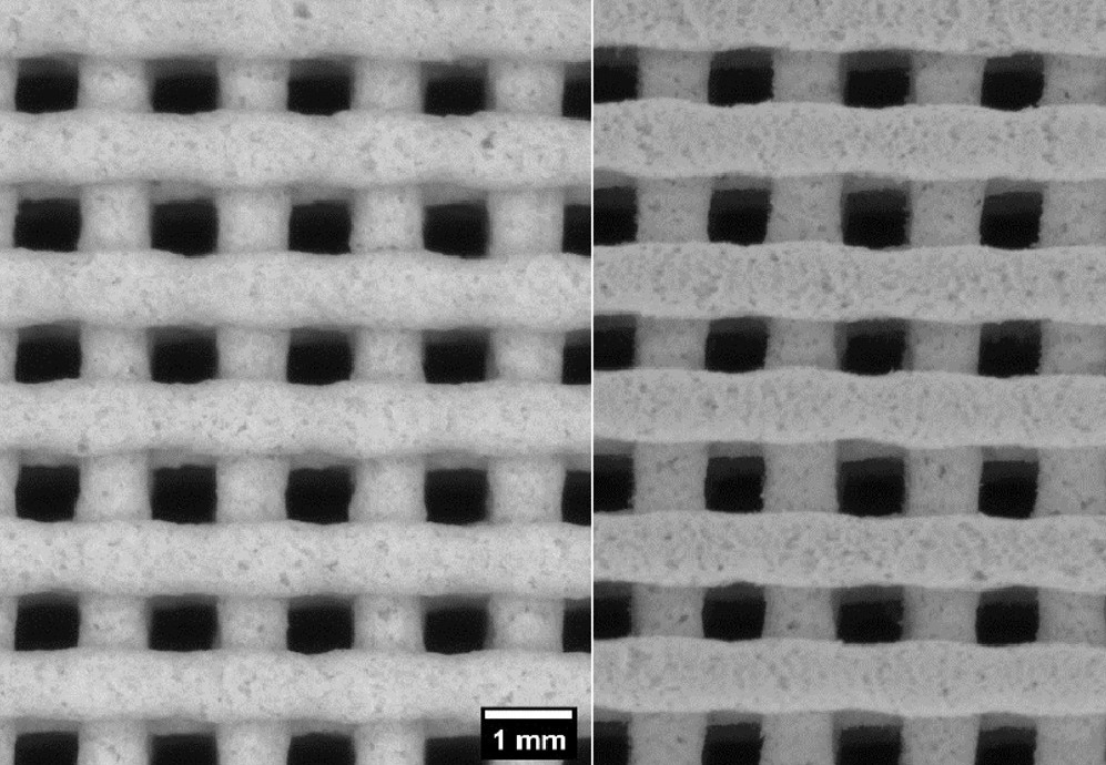 Image of the 3D printed parts' Infill structure before and after debinding.