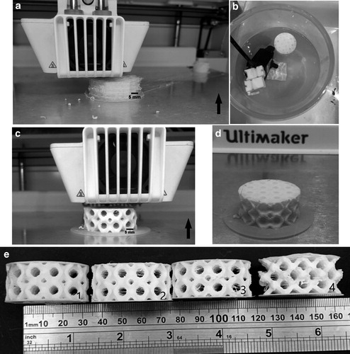 Printing of specimens with the Ultimaker FDM printer and Ultimaker TPU filament. Image via 3D Printing and Additive Manufacturing/Mary Ann Liebert.