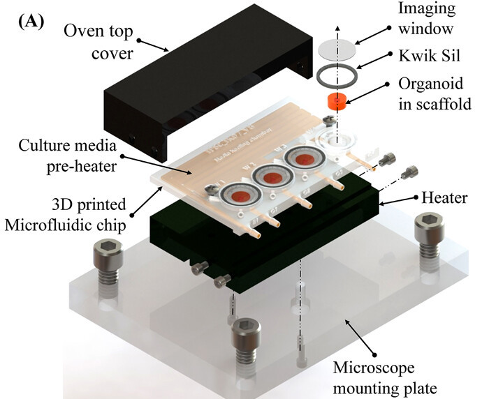 A schematic of the scientists' 3D printed bioreactor.