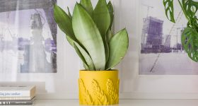 Plant pot printed in ASA Extrafill Dijon Mustard. Photo via Fillamentum.