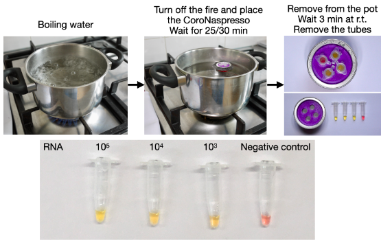 The Scientists' simplified COVID-19 testing method.