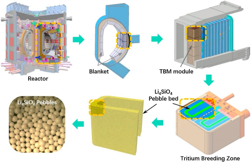 A diagram of a ceramic pebble bed inside a fusion reactor.