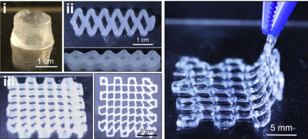 The high-strength hydrogel can be 3D printed for dynamic applications. Photos via North Carolina State University.