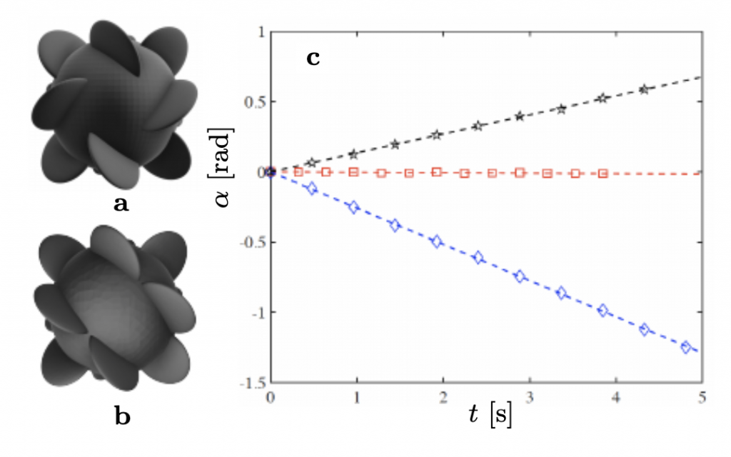 The scientists' helicoid 3D model and experimental results.