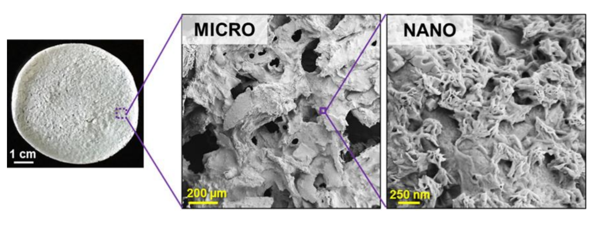 A representative example of a small sheet of Tissue PaperTM derived from ovarian tissue, highlighting its unique micro- and nano-porosity and texture. Image via Dimension Inx.