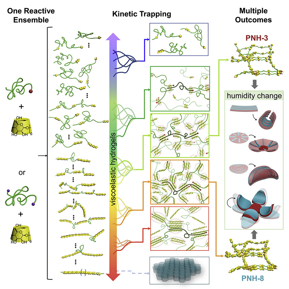 The Kinetic Trapping process developed by the Ke Functional Materials Group at Dartmouth College. Image via Chem.