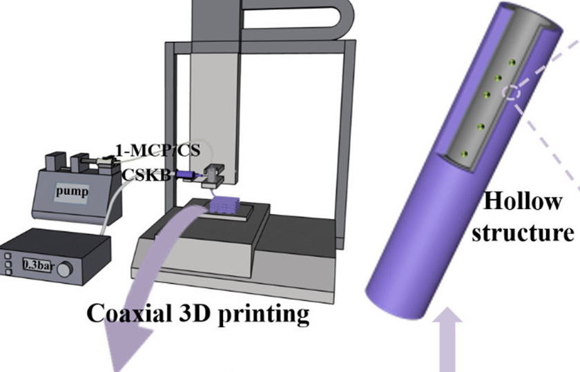 The coaxial 3D printing process behind the researchers' fruit freshness labels.