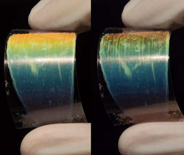 The liquid crystal ink appears to be a different color depending on the angle of incidence. Photo via Eindhoven University of Technology.