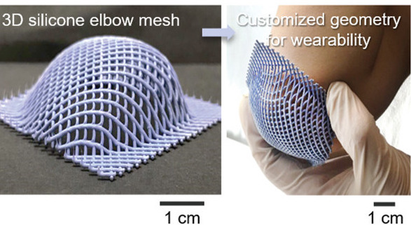 The scientists' pollen-based 3D printed 'elbow mesh.'