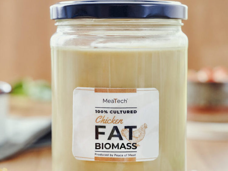 A jar of MeaTech's 3D printed chicken fat.
