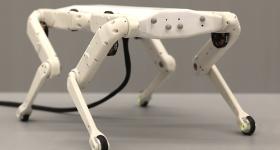 Solo 12, the latest version of the 3D printed robotic dog. Photo via ODRI.